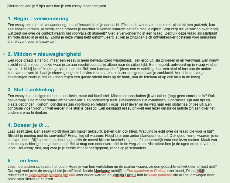 een essay schrijven Ingrid docent Nederlands VO onderbouw :: iraschrijven