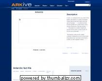 ARKive - Antarctic video H227