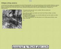 Ginkgo-achtige planten