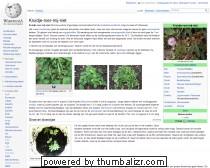 Kruidje-roer-mij-niet - Wikipedia
